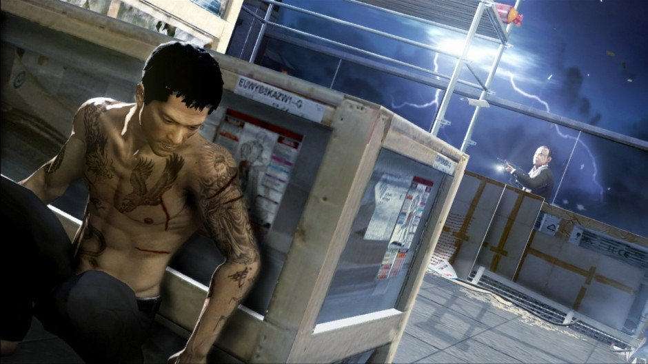 Sleeping Dogs 12