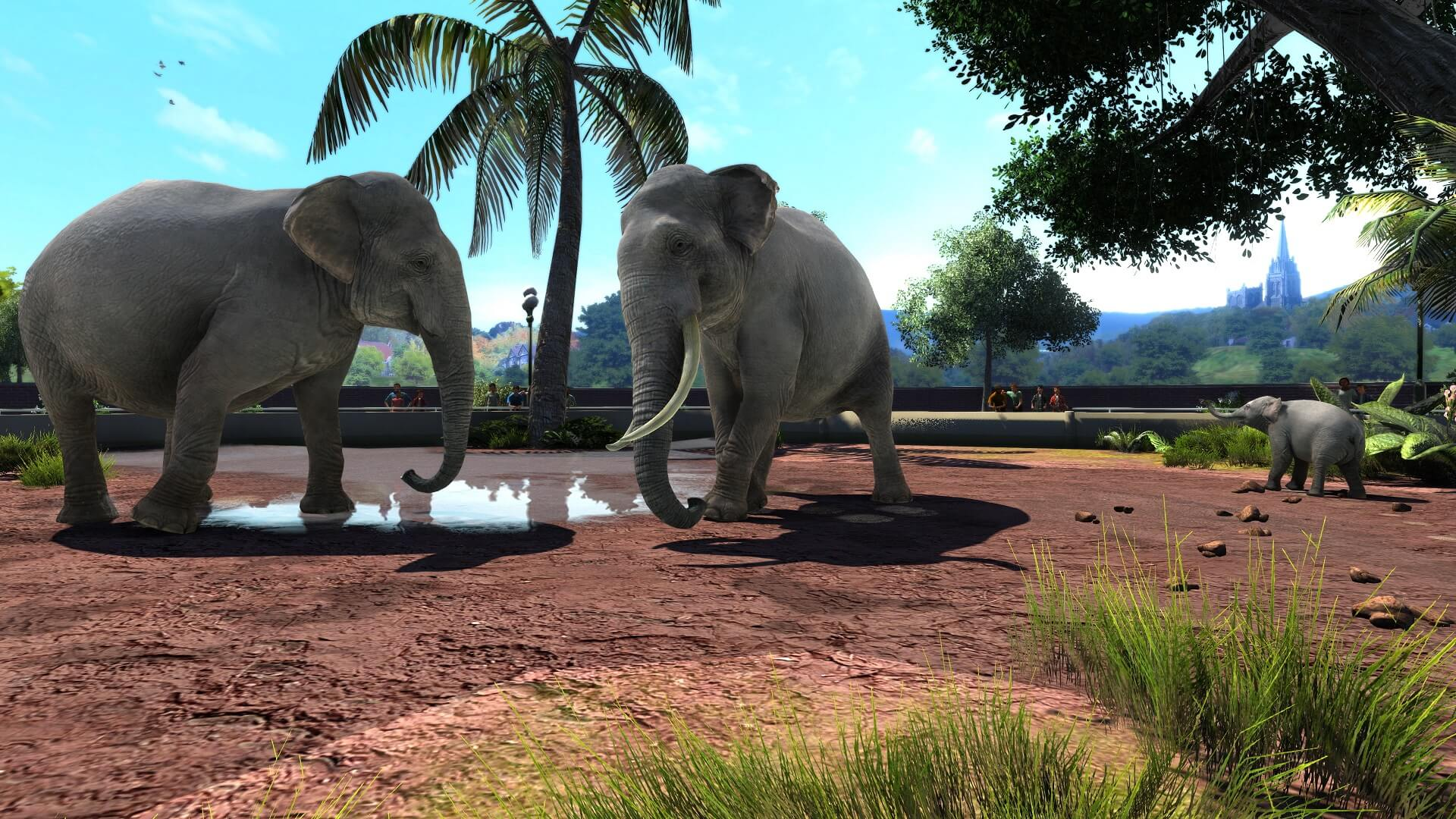 Zoo Tycoon: Ultimate Animal Collection Announced for Xbox Play Anywhere