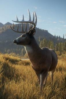theHunter: Call of the Wild First Impressions