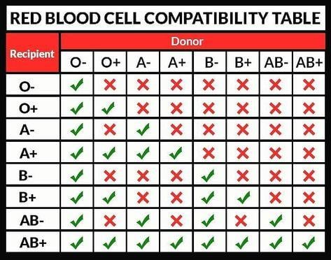 Blood Compatibility Table