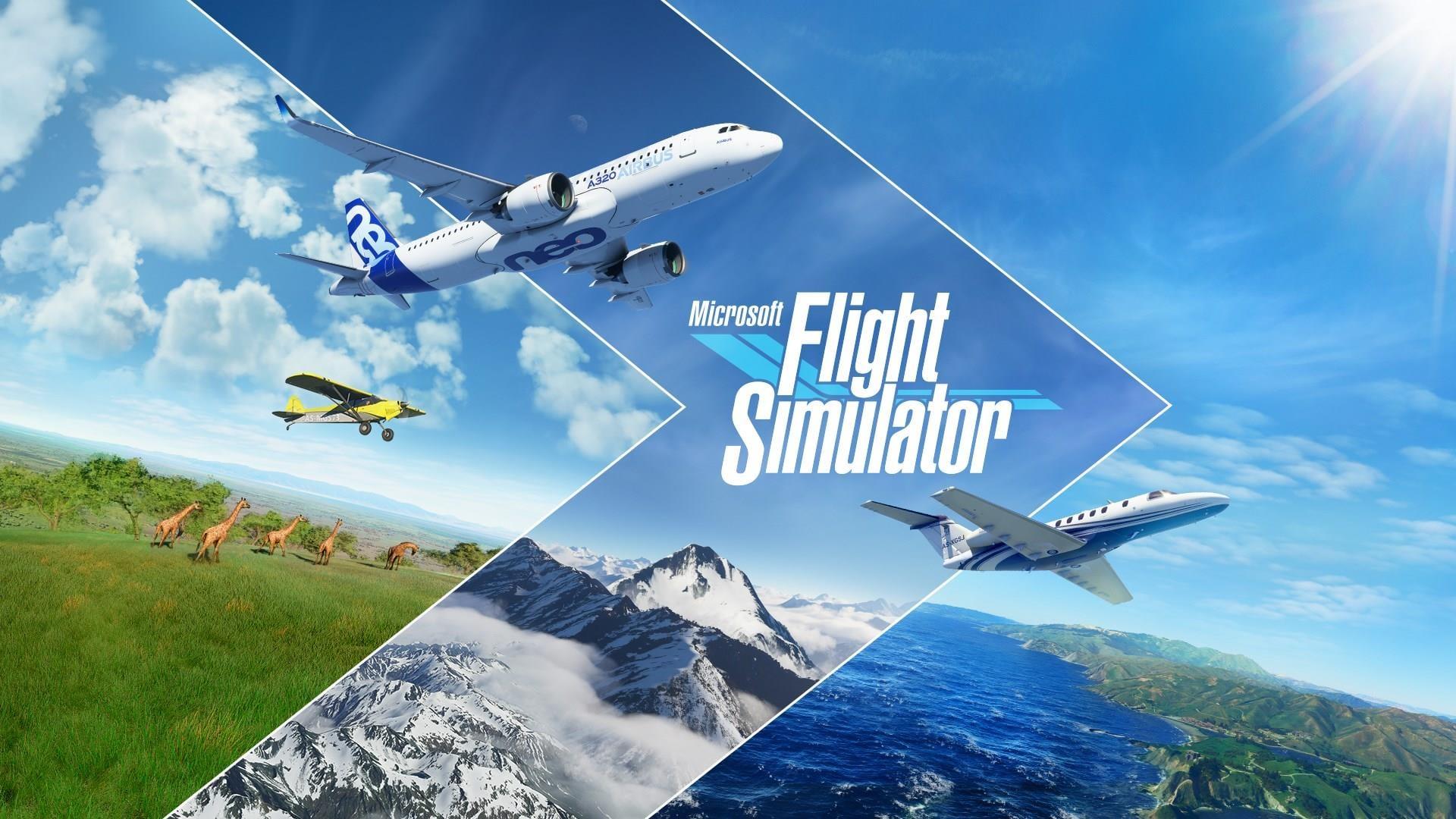 Microsoft Flight Simulator ~ TitledHeroArt