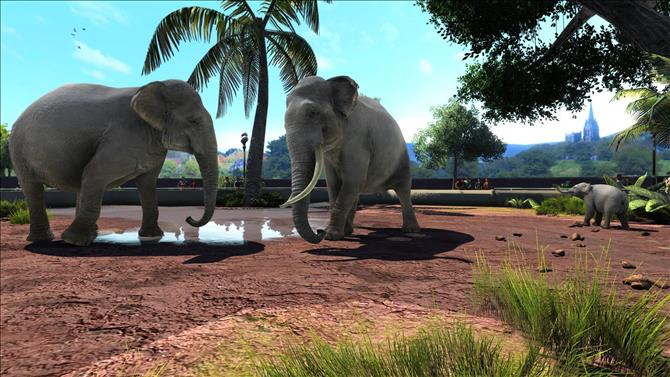 Zoo Tycoon: Ultimate Animal Collection Detailed