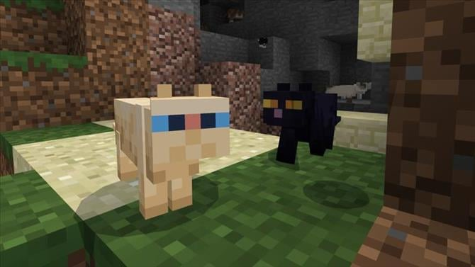 Cats & Pandas Invade Minecraft In The Newly Released Update 1 8
