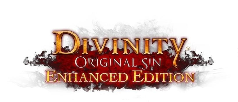 Divinity Orignal Sin Enhanced Edition