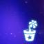 Star Planter!