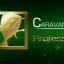CARAVAN MODE 80,000 points