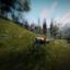 Long Distance Hunter